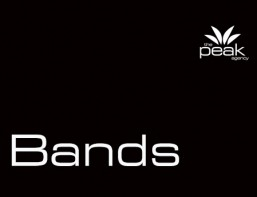 Peak Logo - 500x344 Black White BANDS